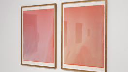 Matthew Allen, Untitled (flow painting) and Spectrial Variation #37
