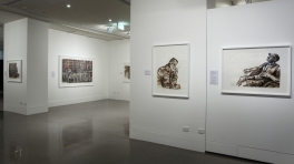 Perspectives (Installation View)