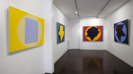 'In Light of Colour: 1965 - 2008' Installation