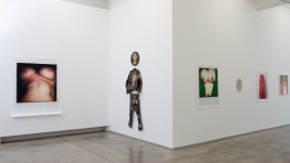 Installation view, Polly Borland, 'Polymorph'