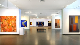 'Sydney Ball: The Colour Paintings 1963-2007' Installation